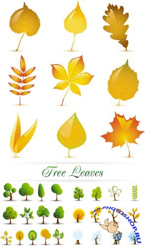 Tree Leaves Vector