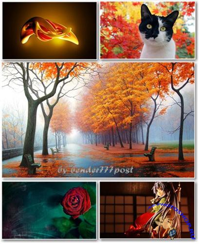 Best HD Wallpapers Pack №365