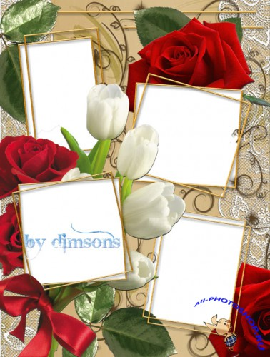 Photo Frame - Red rose