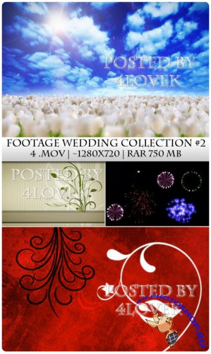 Footage Wedding Collection 2