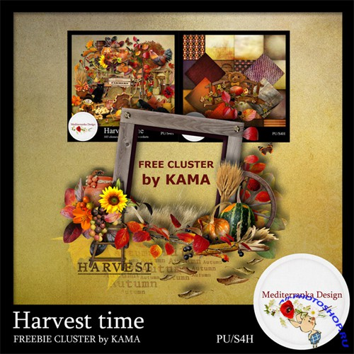 Cluster Frame - Harvest Time
