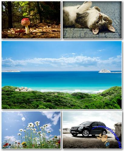 Best HD Wallpapers Pack №397