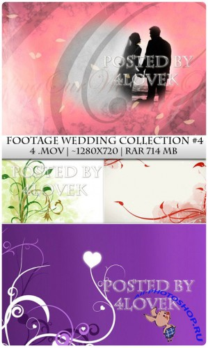 Footage Wedding Collection 4