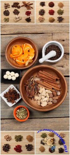 Photo Cliparts - Spices
