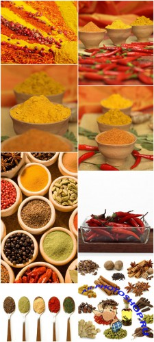 Spice Cliparts - seasoning, spices, pepper