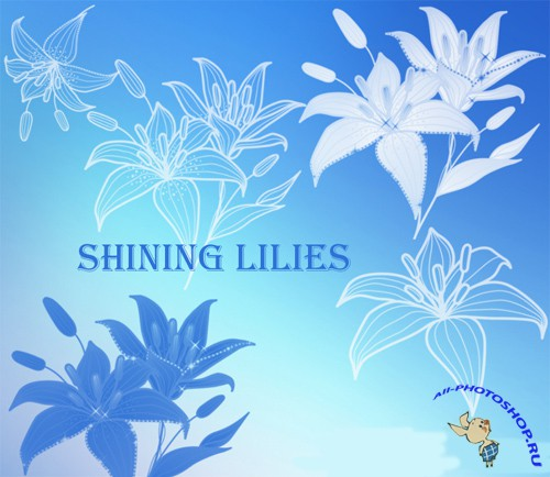 Shining lilies brushes