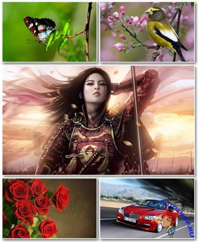 Best HD Wallpapers Pack �404