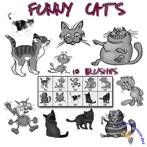 Funny cats brushes