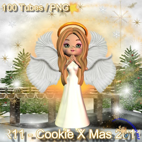 R11 - Cookie X-Mas 2011