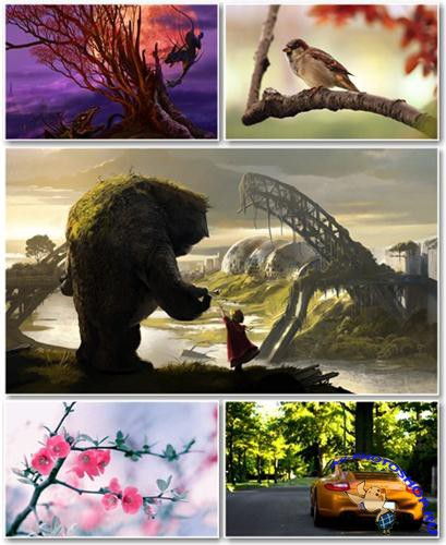 Best HD Wallpapers Pack �412