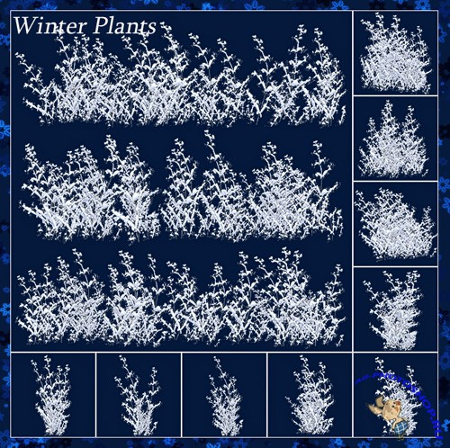 Scrap-kit - Winter Plants