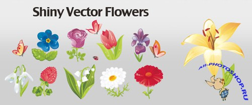 Shiny Flowers Vector