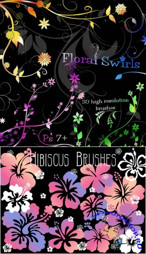 Floral Swirl Brushes and Hibiscus Brushes