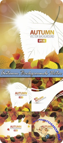 Autumn Backgrounds Vector