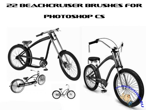 Beachcruiser Brushes