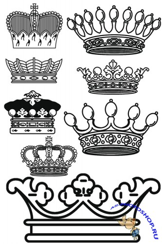 Crowns Brushes set