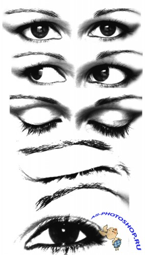 Eye Brushes set for Photoshop