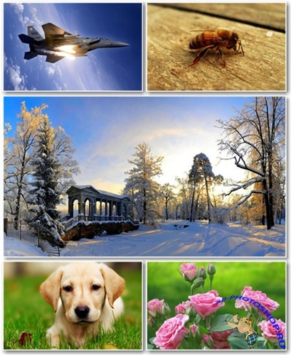 Best HD Wallpapers Pack №470