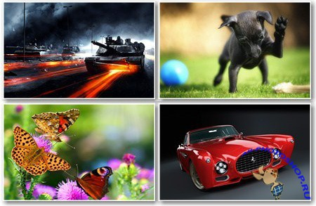 Various Wallpapers for PC - ��������� ����� ��� �������� ����� - Pack 457