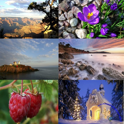 ���� ��� �������� ����� - Wallpapers Nature �4