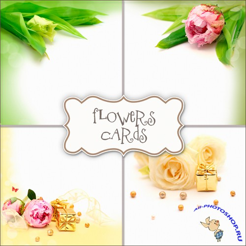 Textures - Flowers Cards