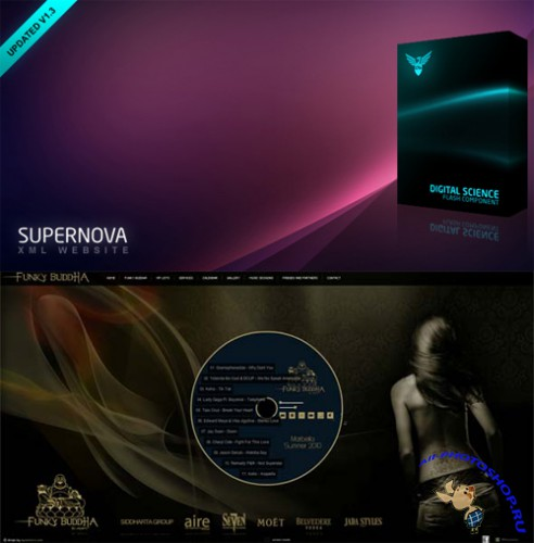 ActiveDen - Supernova XML Website 1.3 & Customized Version