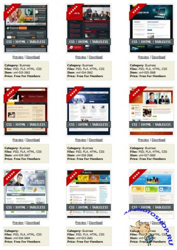 20 Full Flash XML Templates Collection (RETAIL) - Templateworld