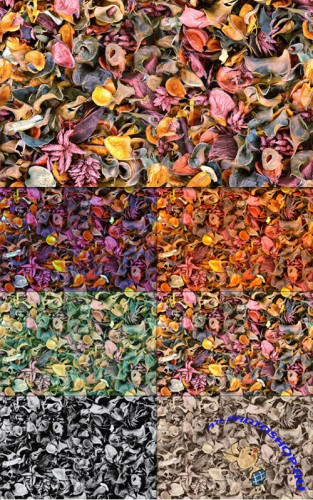 Tileable Potpourri Texture with 6 Colors