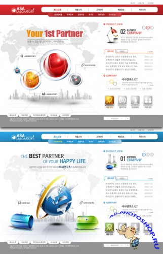 Korea Web Templates - your first business partner sites