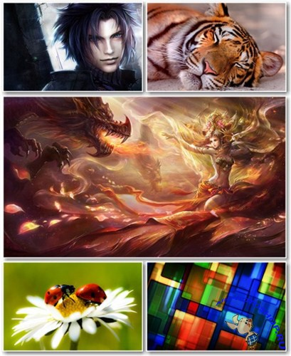 Best HD Wallpapers Pack �506