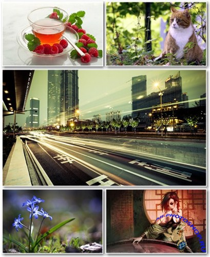 Best HD Wallpapers Pack №516