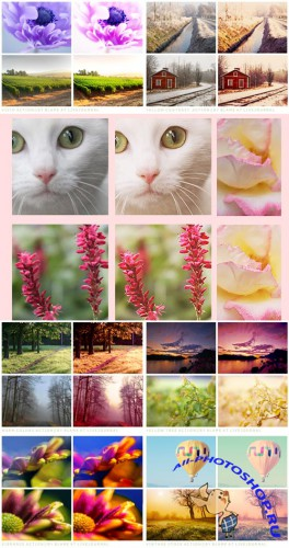 Cool Photoshop Action 2012 pack 317