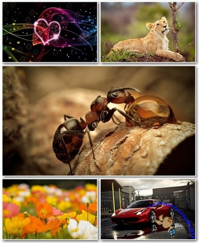 Best HD Wallpapers Pack №545