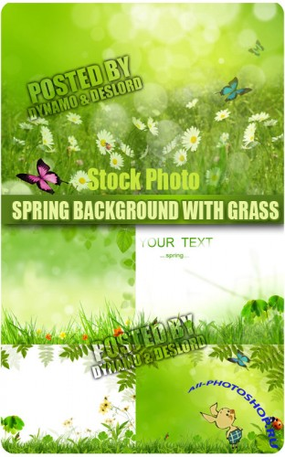 Spring background with grass - UHQ Stock Photo