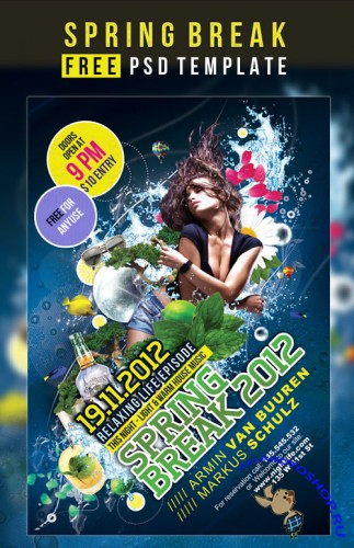 Spring Break Flyer/Poster PSD template