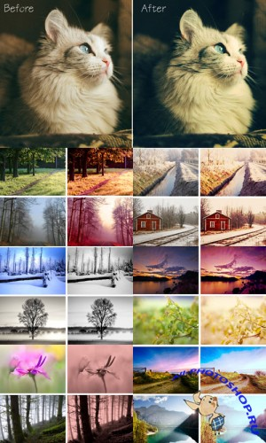 Cool Photoshop Action 2012 pack 399