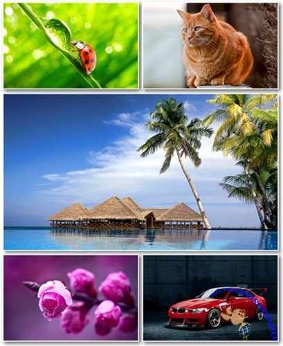 Best HD Wallpapers Pack №567
