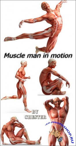 Muscle man in motion