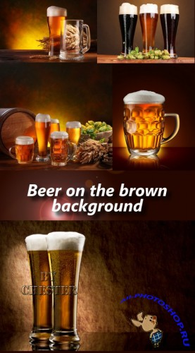 Beer on the brown background