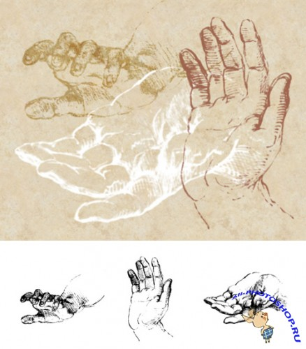 Sketches of Hands Brushes Set for Photoshop