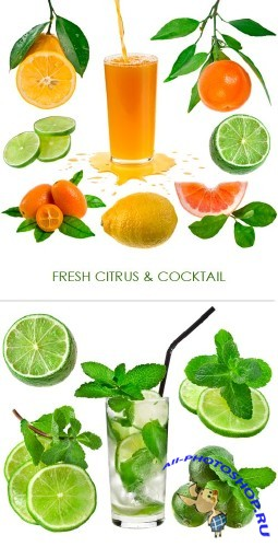 Fresh citrus and cocktail