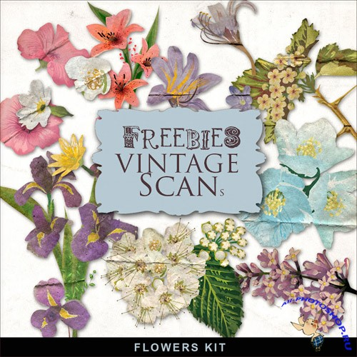 Skrap-kit Vintage beautiful Flowers