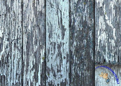 Textures - Old White Weathered Wood