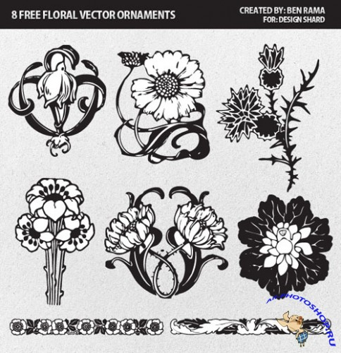 Vector Pack - 8 Floral & Decorative Ornaments