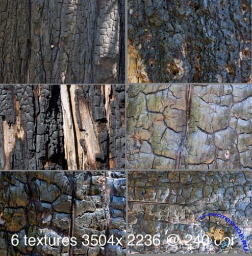 Stock Textures - Charred Wood