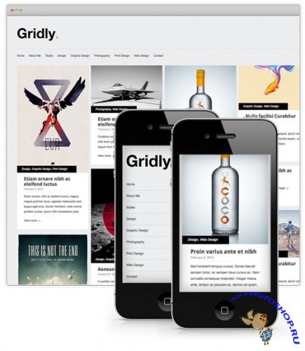 Gridly Folio WordPress Theme
