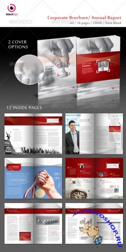 GraphicRiver - Executive Corporate Brochure / Annual Report