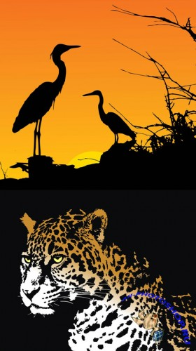 Jaguar and Herons Vectors