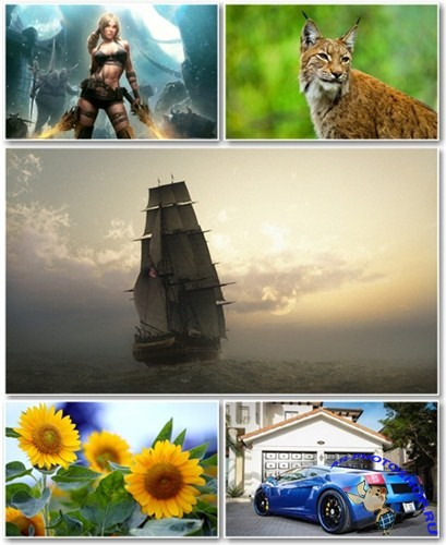 Best HD Wallpapers Pack №657