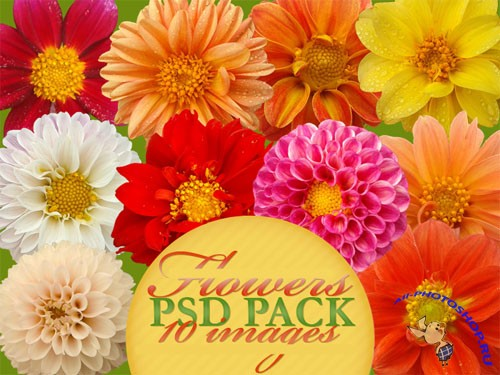 PSD Clipart - Flowers